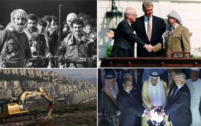 Bonjour Palestine, tu nous as tellement manqué !