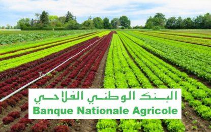 La BNA lance les CVA pour financer les petits agriculteurs
