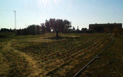 Tunisie : L'Etat récupère deux terrains domaniaux à Sfax