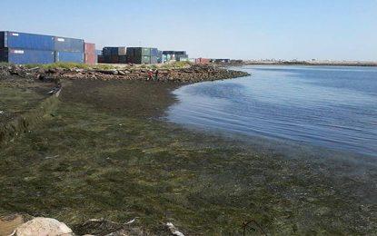 Sfax : Enquête sur la pollution des côtes près de la Siape