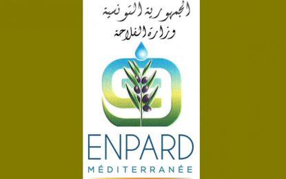 Programme PAP-Enpard Tunisie : Pour la promotion des zones rurales