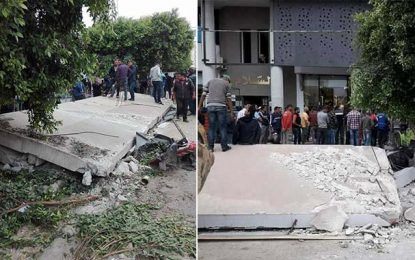 Sidi Bouzid : Un élu Ennahdha démolit une station de bus et des arbres