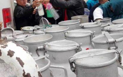 Crise du lait en Tunisie : Les éleveurs expliquent leurs difficultés