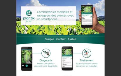 Lancement de l'application mobile Plantix en Tunisie