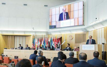Sécheresse en Afrique du Nord : Etat des lieux détaillé et des solutions ciblées