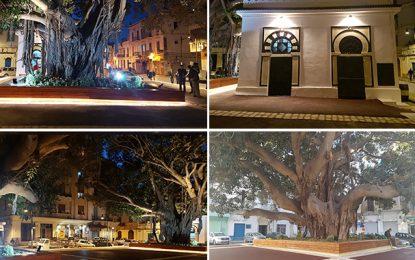 Tunis : La Place de la Monnaie fait peau neuve