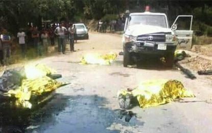 Terrorisme : L'Egypte et la Turquie condamnent l'attaque de Ghardimaou