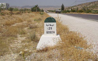 Double meurtre à Oueslatia : Le tireur est en état de fuite