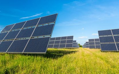 La Tunisie lance un appel d'offres pour la construction de 16 centrales solaires
