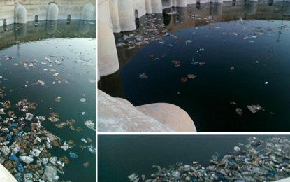 Kairouan : Risque de désastre écologique aux bassins des Aghlabides