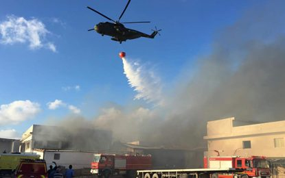 Bizerte : L'armée en renfort pour venir à bout d'un incendie à Menzel Jemil