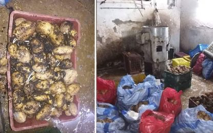 En photos : Des tonnes de patates pourries saisies à El-Ouardia