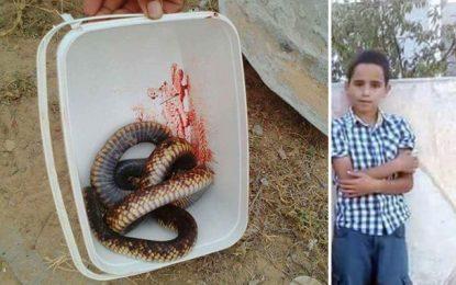 Sfax : Mohamed (9 ans) décède des suites d'une morsure de serpent