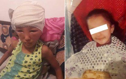 Sousse : Le chien qui a mordu Israa ne sera pas euthanasié