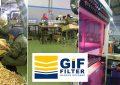 GIF Filter annonce des revenus en baisse de -70 % au 1er trimestre 2020