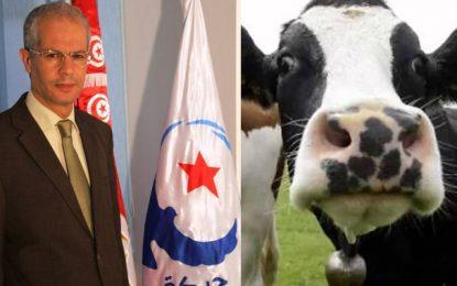 Imed Hammami : Suspicion de cas de vache folle en Tunisie