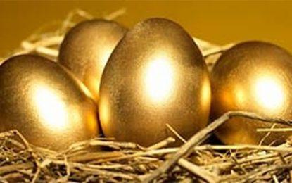 Tunisie : L'ODC dénonce l'augmentation des prix des œufs