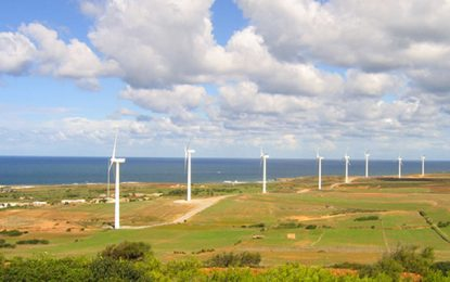 La Tunisie prolonge son appel d'offres d'installation de parcs éoliens