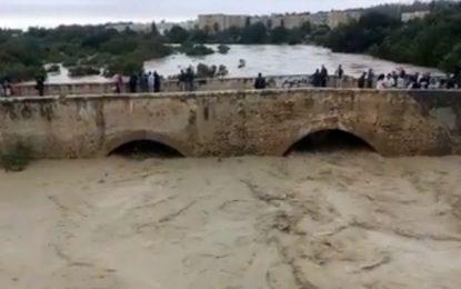 Pluies Tunisie : Montée des eaux de l'oued Meliane à Radès