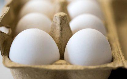 Tunisie : Le prix des 4 œufs fixé officiellement à 840 millimes