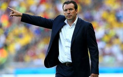 Football : Marc Wilmots candidat pour entraîner la Tunisie