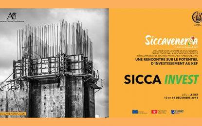 Sicca Invest : Une rencontre pluridisciplinaire pour tracer l'avenir du Kef