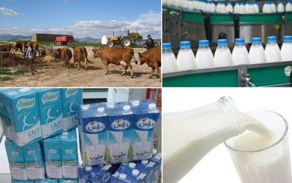 Tunisie : Grève de 3 jours des professionnels de la filière laitière