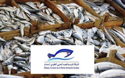Au Golfe de Gabès, qui sauvera la pépinière de la Méditerranée ?