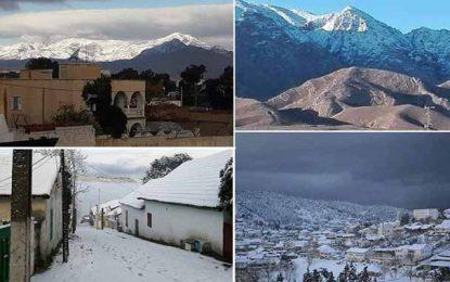 Vague de froid en Tunisie : Kasserine, Gafsa et Aïn Draham sous la neige