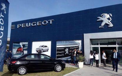 2018, une année faste pour la Stafim Peugeot