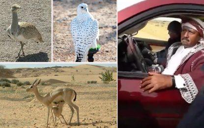 Tozeur : Des activistes malmenés par des gardes des braconniers qataris