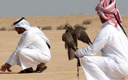 À propos du braconnage des princes du Qatar dans le désert tunisien