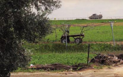 Le drame palestinien s'invite à la 33e édition des Goya des cinémas espagnols (vidéo)