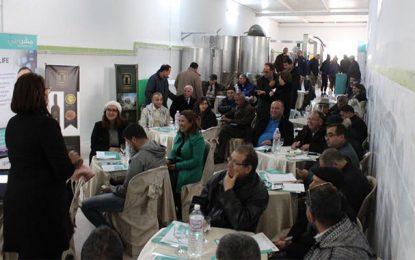 Béja : Lancement d'une «plate forme huile d'olives» à Toukaber