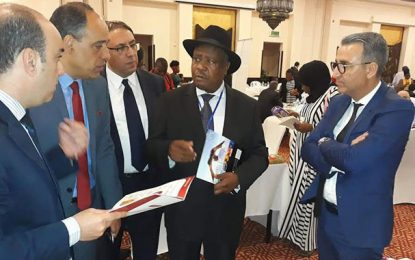 Succès de la mission d'hommes d'affaires tunisiens en en Tanzanie