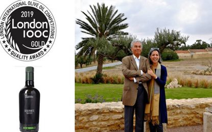 Le domaine de Segermès remporte l'or au London Olive Oil Compétitions 2019
