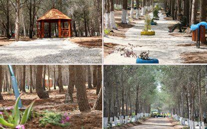 El-Agba : Inauguration de la première forêt urbaine en Tunisie (Photos)