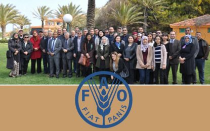 Atelier de la Fao à Tabarka sur l'efficience et la productivité de l'eau