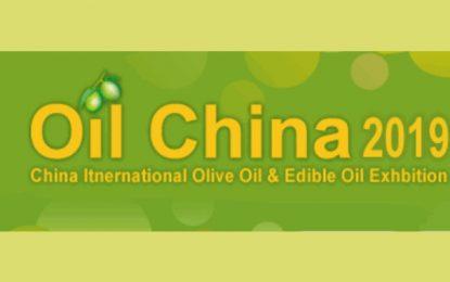 Tunisie : L'huile d'olive à l'assaut du marché chinois