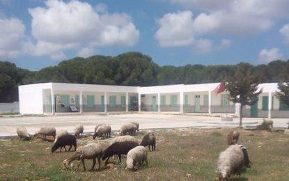 Bizerte : Enquête sur l'intoxication alimentaire de 109 élèves à Sejnane