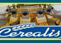 Cerealis : Hausse du résultat net part de 32,7%, en 2018
