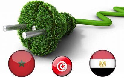 Energies vertes : La Tunisie voit moins grand que le Maroc et l'Egypte
