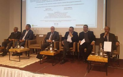 Marouane El Abassi : C'est le bon moment pour une amnistie de change