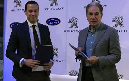 Avec  AutoPro, la Stafim-Peugeot se lance dans la reprise des voitures d'occasion