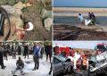 Une thanatocratie est-elle viable? Cas de la Tunisie postrévolutionnaire