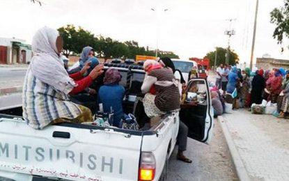 La chasse aux «camions de la mort» se poursuit: Trois véhicules saisis à Sidi Bouali