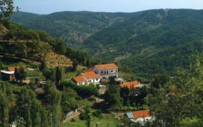 Un investisseur algérien intéressé par l'achat d'hôtels fermés à Ain Draham et Tabarka