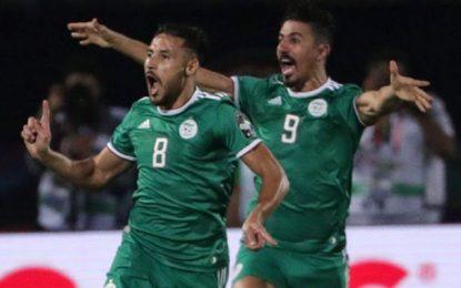 Algérie-Sénégal 1-0 : la lumière venue de l'Espérantiste Youcef Belaili