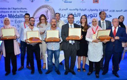 Le 2e Concours tunisien des produits du terroir met le savoir-faire ancestral à l'honneur