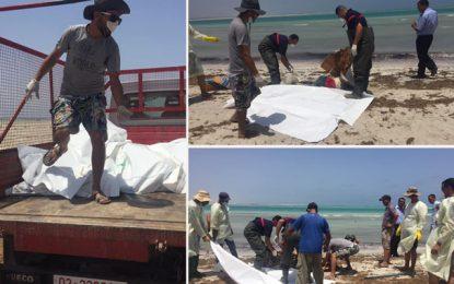 Migration clandestine : Plus de 10 autres corps  repêchés à Zaris et Djerba